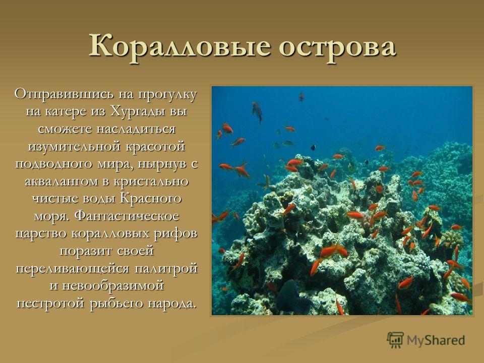 Коралловые острова Отправившись на прогулку на катере из Хургады вы сможете насладиться изумительной красотой подводного мира, нырнув с аквалангом в кристально чистые воды Красного моря. Фантастическое царство коралловых рифов поразит своей переливаю