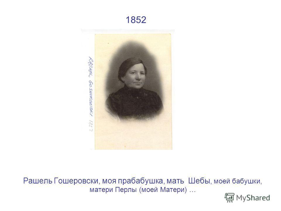 1852 Рашель Гошеровски, моя прабабушка, мать Шебы, моей бабушки, матери Перлы (моей Матери) …