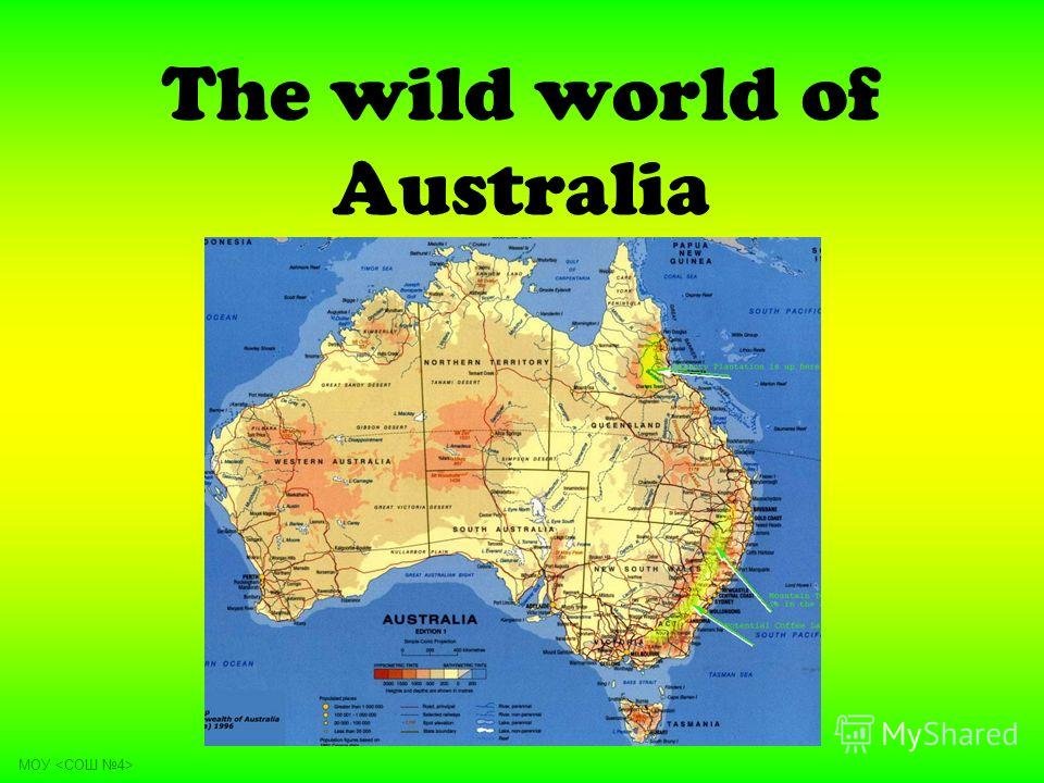 The wild world of Australia МОУ