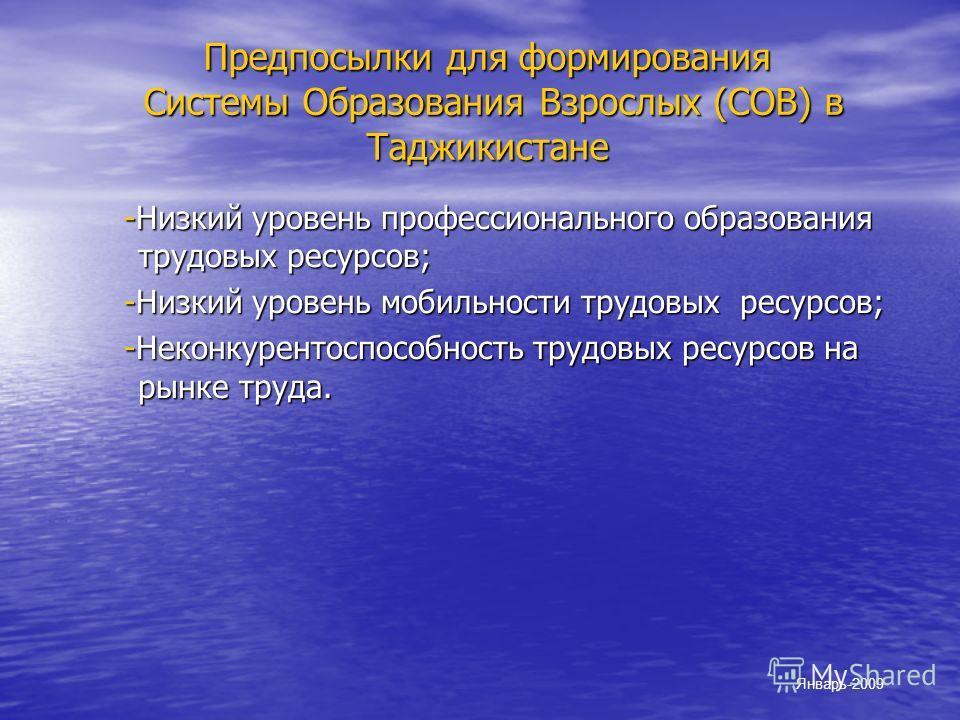 Предпосылки для формирования Системы Образования Взрослых (СОВ) в Таджикистанe -Низкий уровень профессионального образования трудовых ресурсов; -Низкий уровень профессионального образования трудовых ресурсов; -Низкий уровень мобильности трудовых ресу