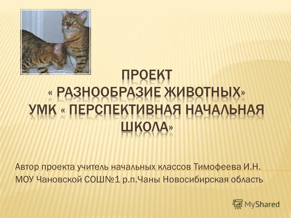 Автор проекта учитель начальных классов Тимофеева И.Н. МОУ Чановской СОШ1 р.п.Чаны Новосибирская область