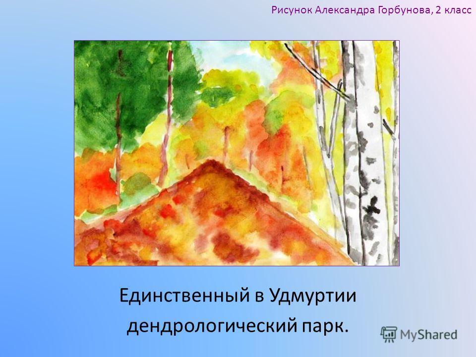 Единственный в Удмуртии дендрологический парк. Рисунок Александра Горбунова, 2 класс