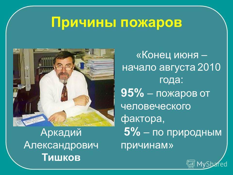 Аркадий Александрович Тишков «Конец июня – начало августа 2010 года: 95% – пожаров от человеческого фактора, 5% – по природным причинам» Причины пожаров