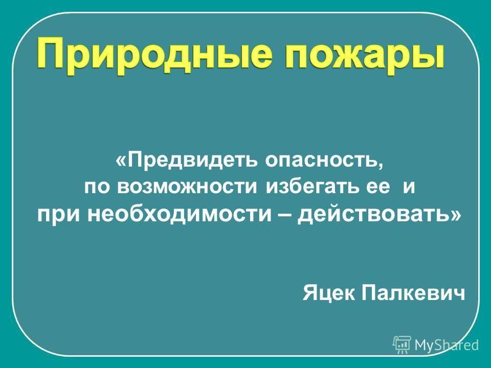 «Предвидеть опасность, по возможности избегать ее и при необходимости – действовать » Яцек Палкевич