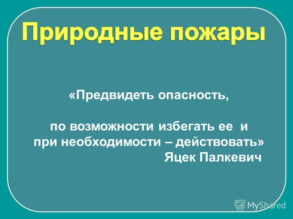 «Предвидеть опасность, по возможности избегать ее и при необходимости – действовать» Яцек Палкевич