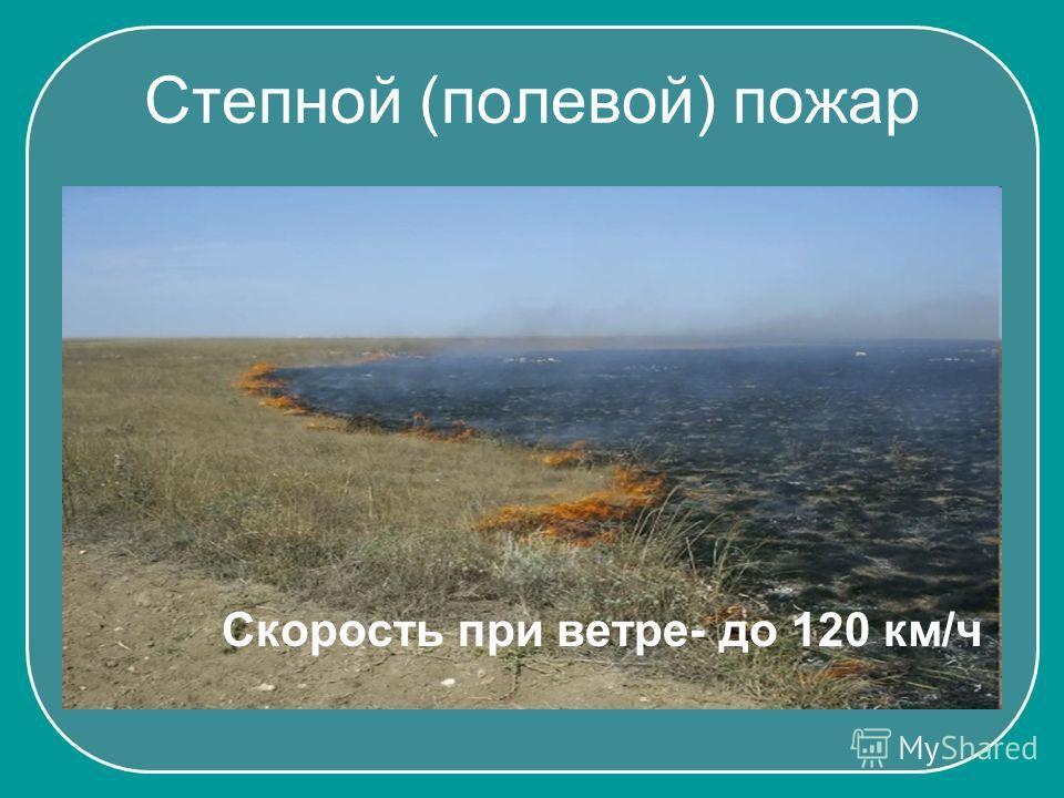 Степной (полевой) пожар Скорость при ветре- до 120 км/ч