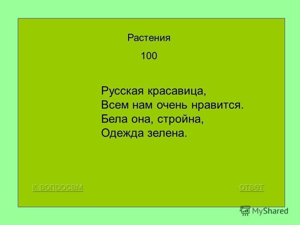 Русская красавица, Всем нам очень нравится. Бела она, стройна, Одежда зелена. Растения 100