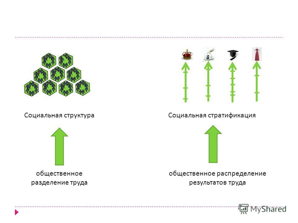 Социальная структура общественное разделение труда Социальная стратификация общественное распределение результатов труда