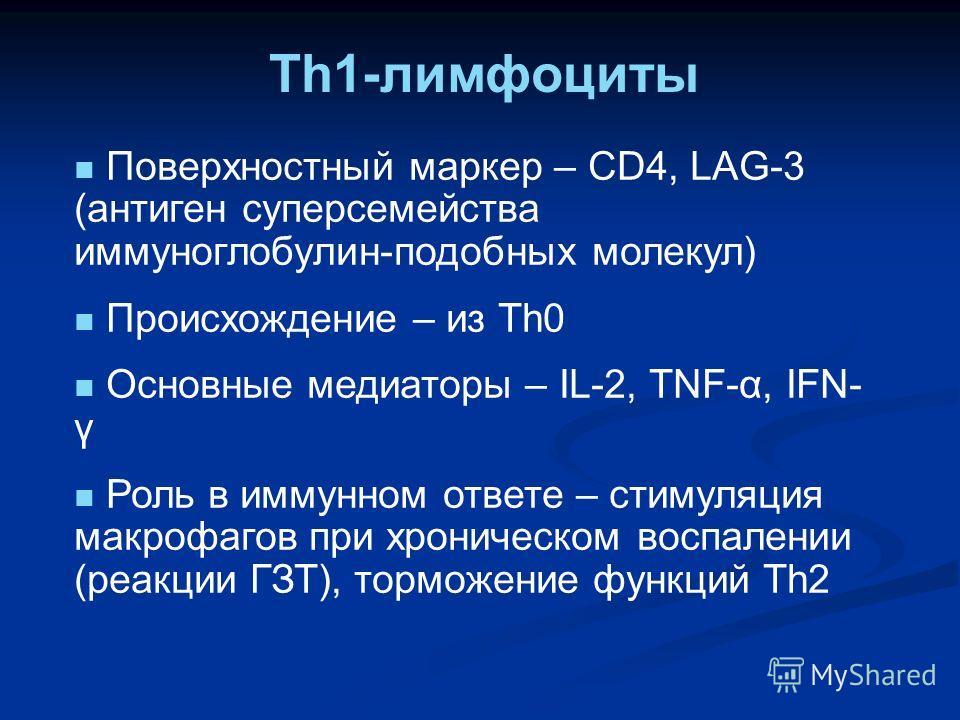 Th1-лимфоциты Поверхностный маркер – CD4, LAG-3 (антиген суперсемейства иммуноглобулин-подобных молекул) Происхождение – из Th0 Основные медиаторы – IL-2, TNF-α, IFN- γ Роль в иммунном ответе – стимуляция макрофагов при хроническом воспалении (реакци