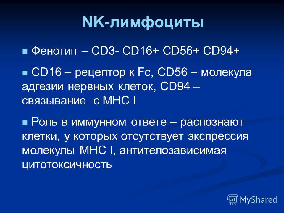 NK-лимфоциты Фенотип – CD3- CD16+ CD56+ CD94+ CD16 – рецептор к Fc, CD56 – молекула адгезии нервных клеток, CD94 – связывание с MHC I Роль в иммунном ответе – распознают клетки, у которых отсутствует экспрессия молекулы MHC I, антителозависимая цитот