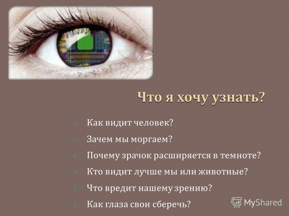 Как видит человек ? Зачем мы моргаем ? Почему зрачок расширяется в темноте ? Кто видит лучше мы или животные ? Что вредит нашему зрению ? Как глаза свои сберечь ?