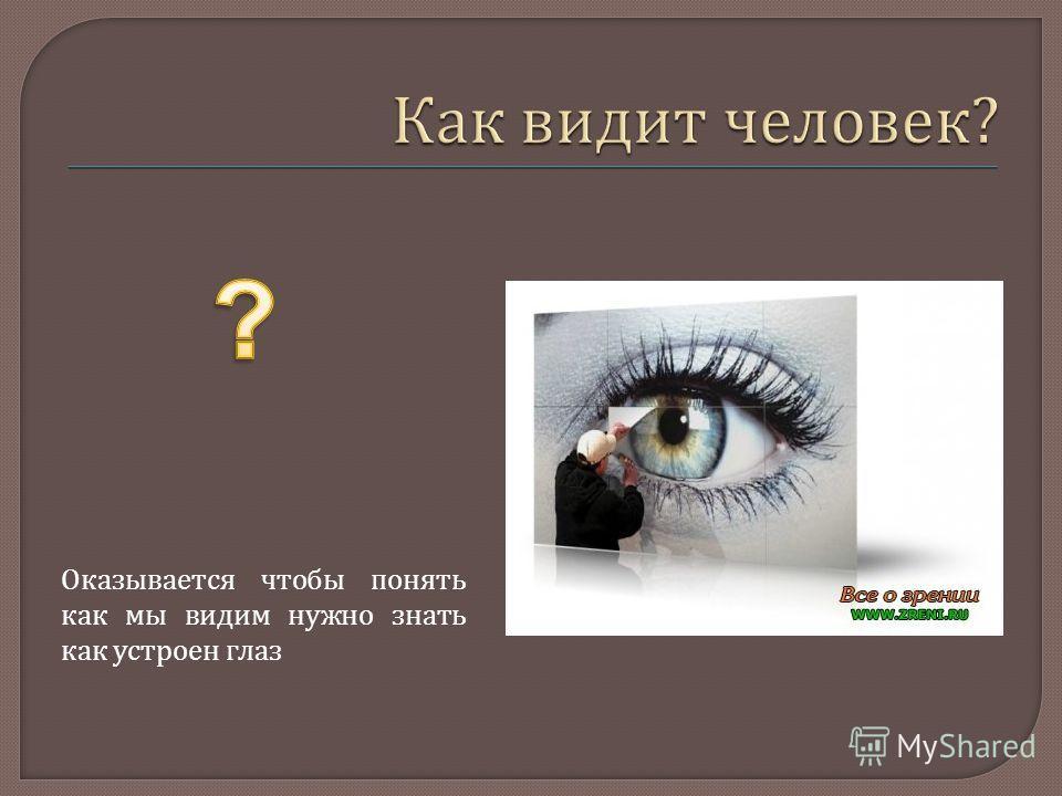 Оказывается чтобы понять как мы видим нужно знать как устроен глаз