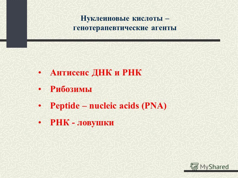 Нуклеиновые кислоты – генотерапевтические агенты Антисенс ДНК и РНК Рибозимы Peptide – nucleic acids (PNA) РНК - ловушки