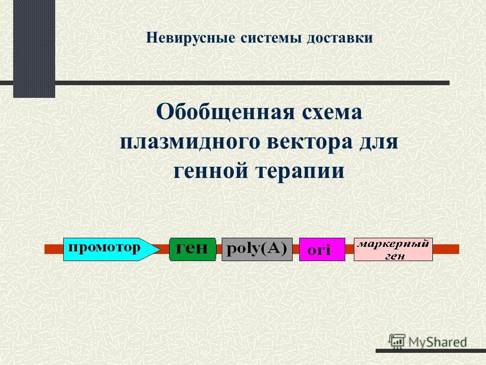 Обобщенная схема плазмидного вектора для генной терапии Невирусные системы доставки