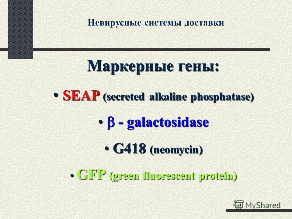 Маркерные гены: SEAP (secreted alkaline phosphatase) SEAP (secreted alkaline phosphatase) - galactosidase - galactosidase G418 (neomycin) G418 (neomycin) GFP (green fluorescent protein) GFP (green fluorescent protein) Невирусные системы доставки