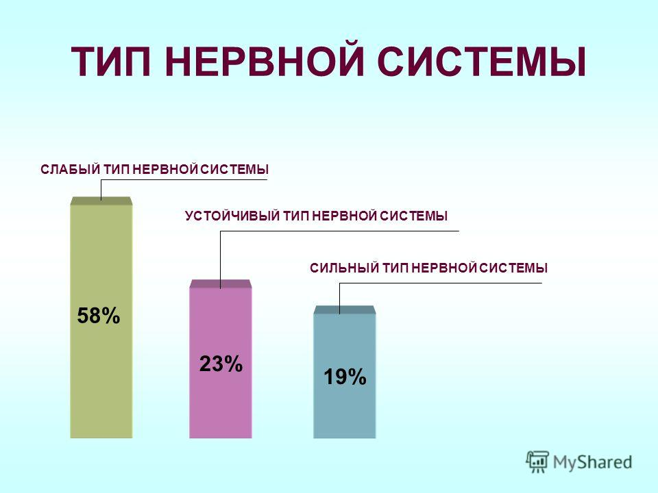 ТИП НЕРВНОЙ СИСТЕМЫ 23% 19% СЛАБЫЙ ТИП НЕРВНОЙ СИСТЕМЫ 58% УСТОЙЧИВЫЙ ТИП НЕРВНОЙ СИСТЕМЫ СИЛЬНЫЙ ТИП НЕРВНОЙ СИСТЕМЫ