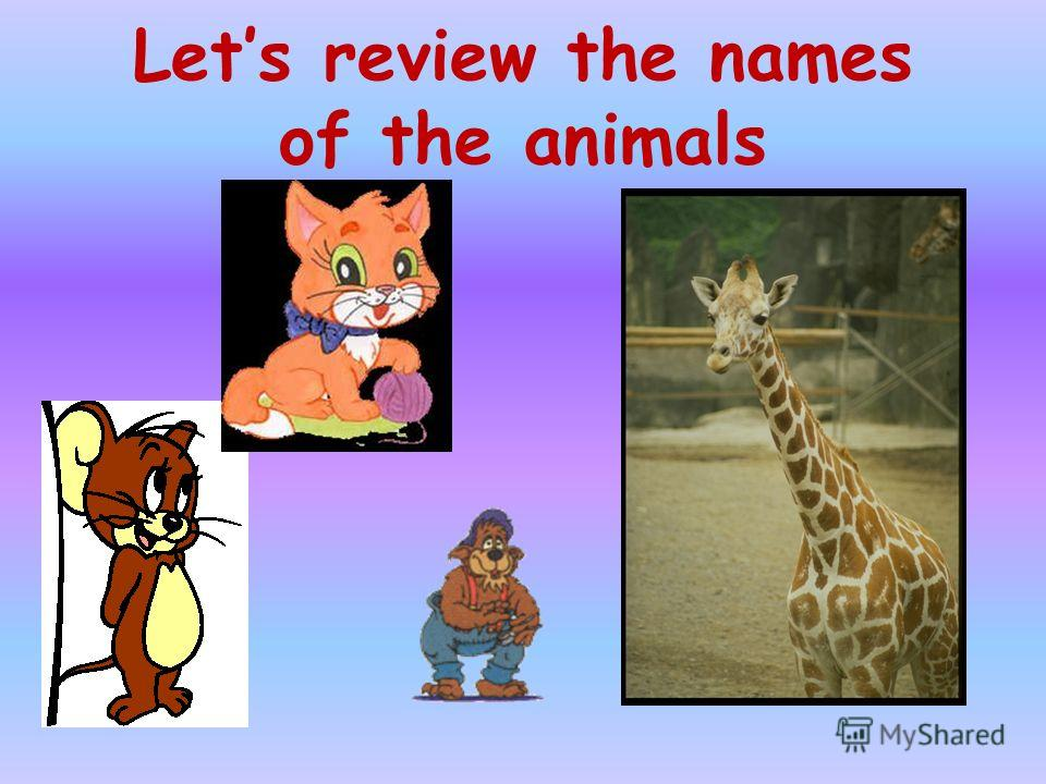 Lets review the names of the animals