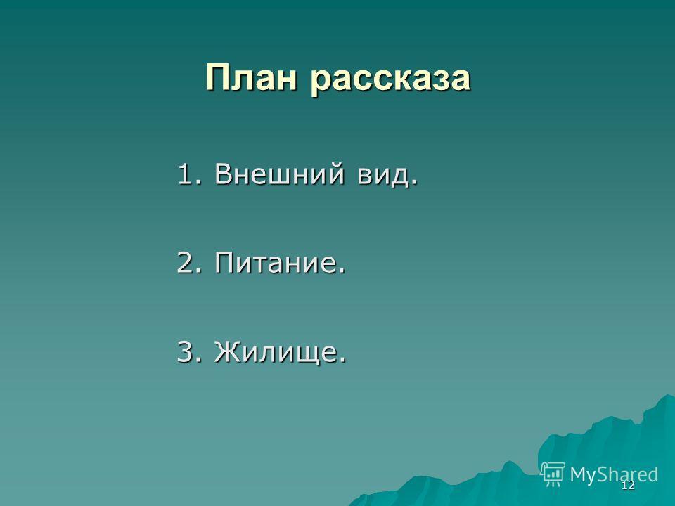 12 План рассказа 1. Внешний вид. 2. Питание. 3. Жилище.