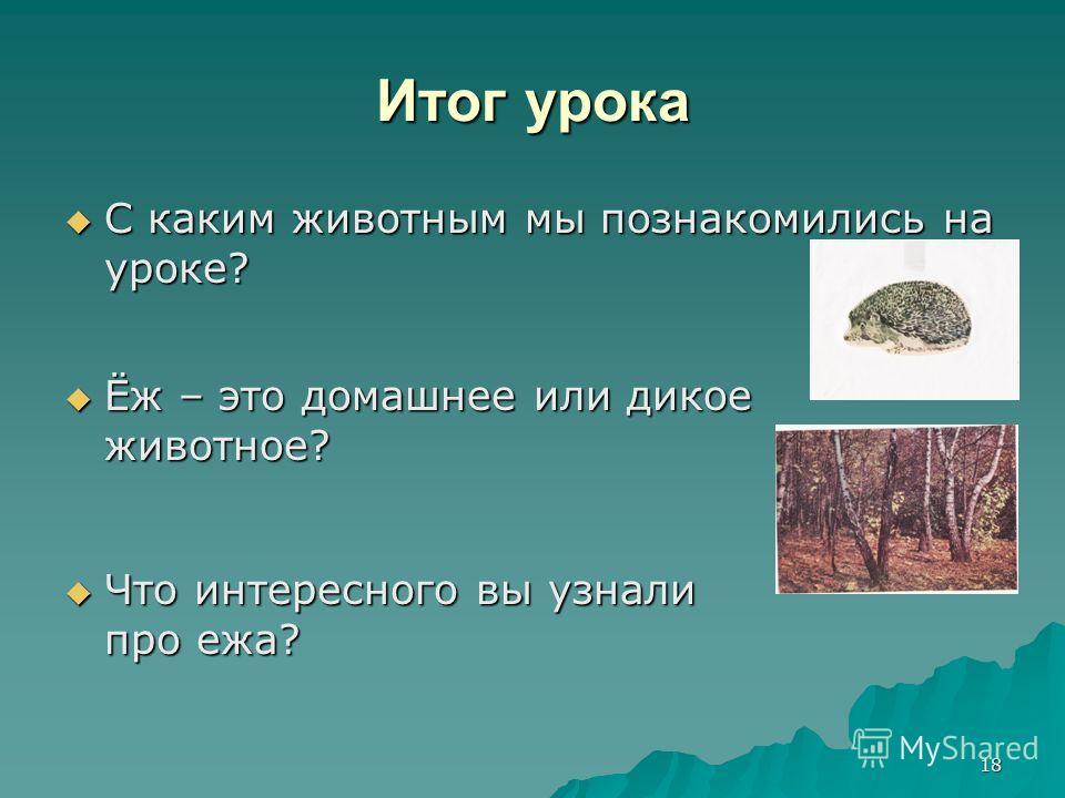 18 Итог урока С каким животным мы познакомились на уроке? С каким животным мы познакомились на уроке? Ёж – это домашнее или дикое животное? Ёж – это домашнее или дикое животное? Что интересного вы узнали про ежа? Что интересного вы узнали про ежа?
