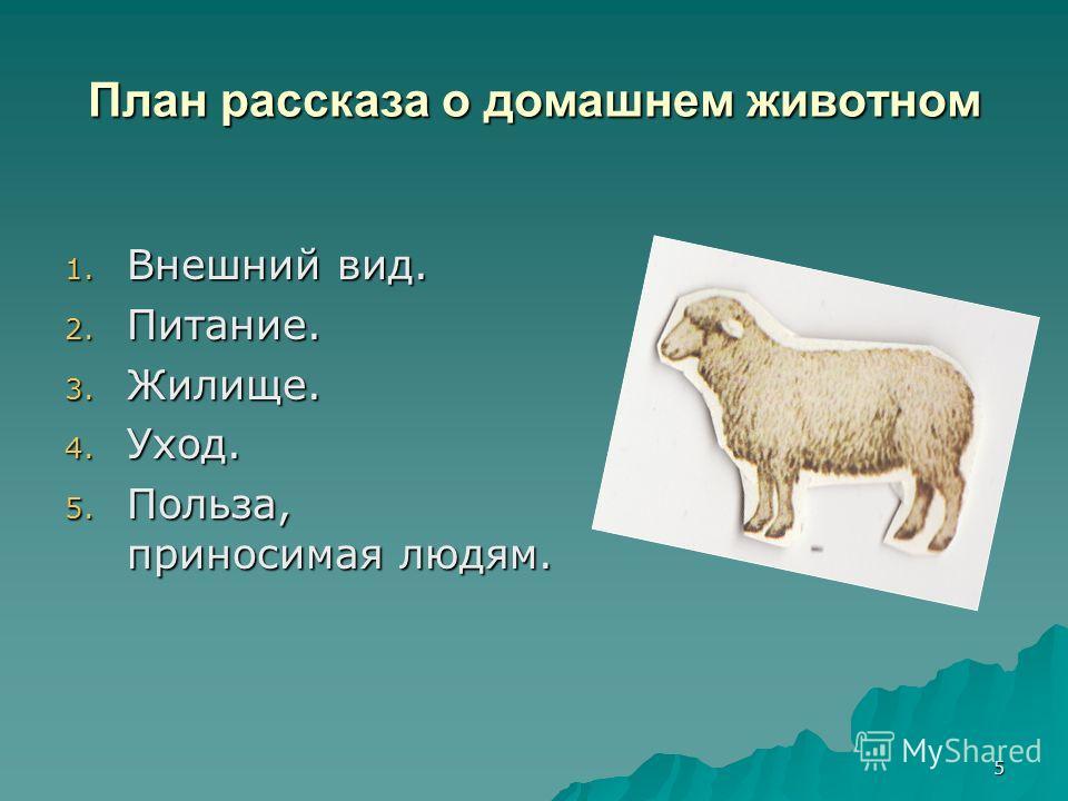 5 План рассказа о домашнем животном 1. Внешний вид. 2. Питание. 3. Жилище. 4. Уход. 5. Польза, приносимая людям.