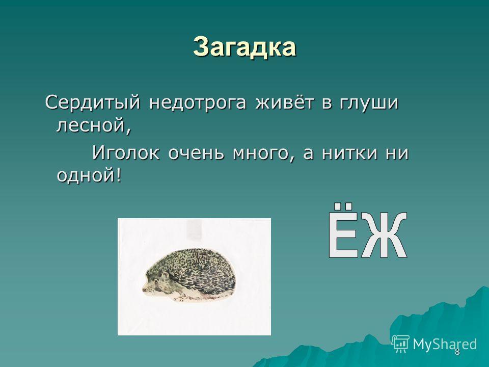 8 Загадка Сердитый недотрога живёт в глуши лесной, Сердитый недотрога живёт в глуши лесной, Иголок очень много, а нитки ни одной! Иголок очень много, а нитки ни одной!