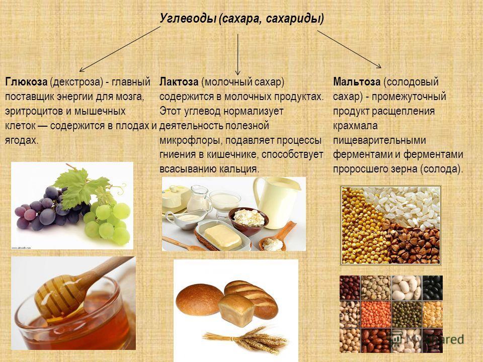 Углеводы (сахара, сахариды) Мальтоза (солодовый сахар) - промежуточный продукт расщепления крахмала пищеварительными ферментами и ферментами проросшего зерна (солода). Глюкоза (декстроза) - главный поставщик энергии для мозга, эритроцитов и мышечных