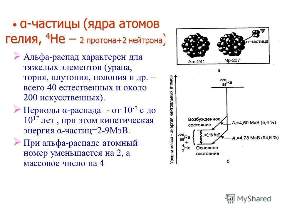 α-частицы (ядра атомов гелия, 4 He – 2 протона+2 нейтрона ) α-частицы (ядра атомов гелия, 4 He – 2 протона+2 нейтрона ) Альфа-распад характерен для тяжелых элементов (урана, тория, плутония, полония и др. – всего 40 естественных и около 200 искусстве