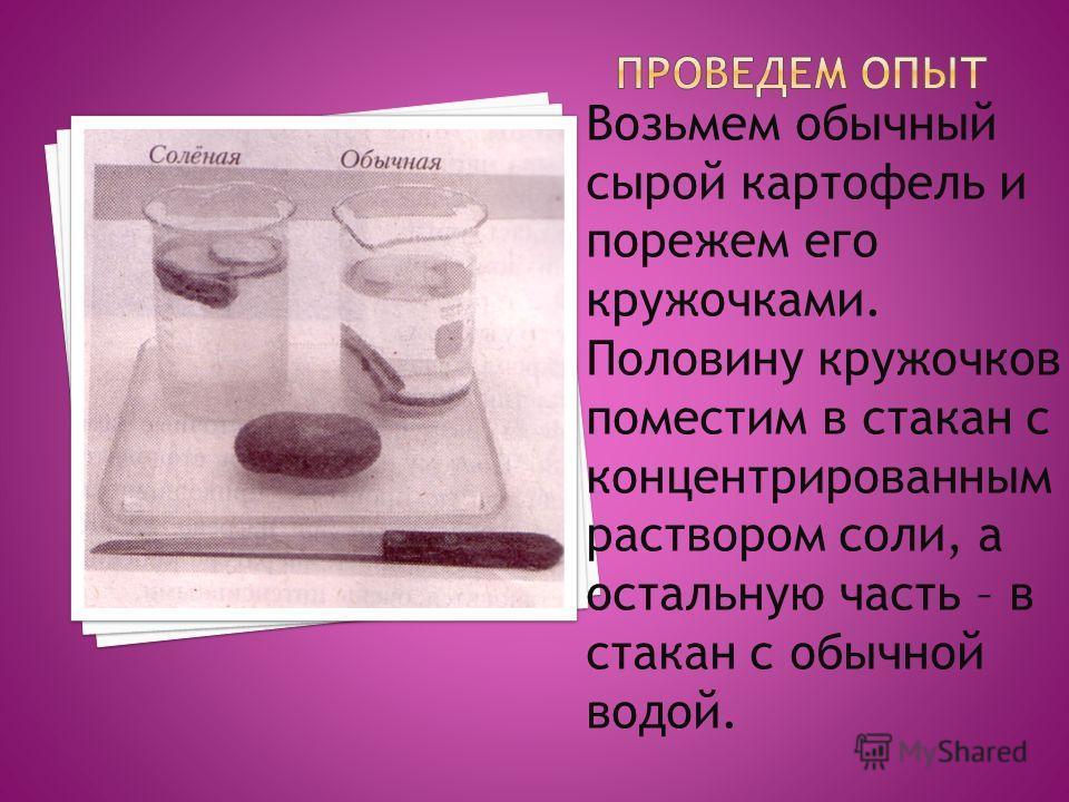 Возьмем обычный сырой картофель и порежем его кружочками. Половину кружочков поместим в стакан с концентрированным раствором соли, а остальную часть – в стакан с обычной водой.