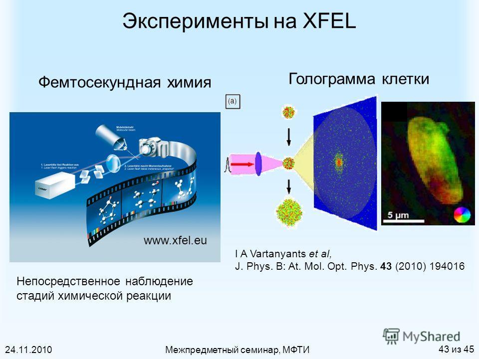 24.11.2010Межпредметный семинар, МФТИ 43 из 45 Эксперименты на XFEL I A Vartanyants et al, J. Phys. B: At. Mol. Opt. Phys. 43 (2010) 194016 Голограмма клетки Фемтосекундная химия www.xfel.eu Непосредственное наблюдение стадий химической реакции