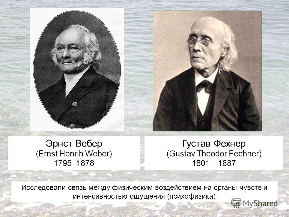 Эрнст Вебер (Ernst Henrih Weber) 1795–1878 Густав Фехнер (Gustav Theodor Fechner) 18011887 Исследовали связь между физическим воздействием на органы чувств и интенсивностью ощущения (психофизика)