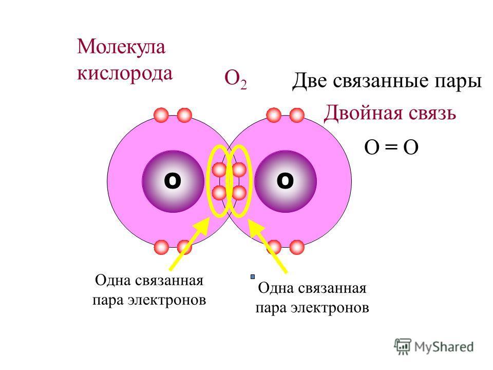 O Молекула кислорода O2O2 O Одна связанная пара электронов Две связанные пары Двойная связь O = O Одна связанная пара электронов
