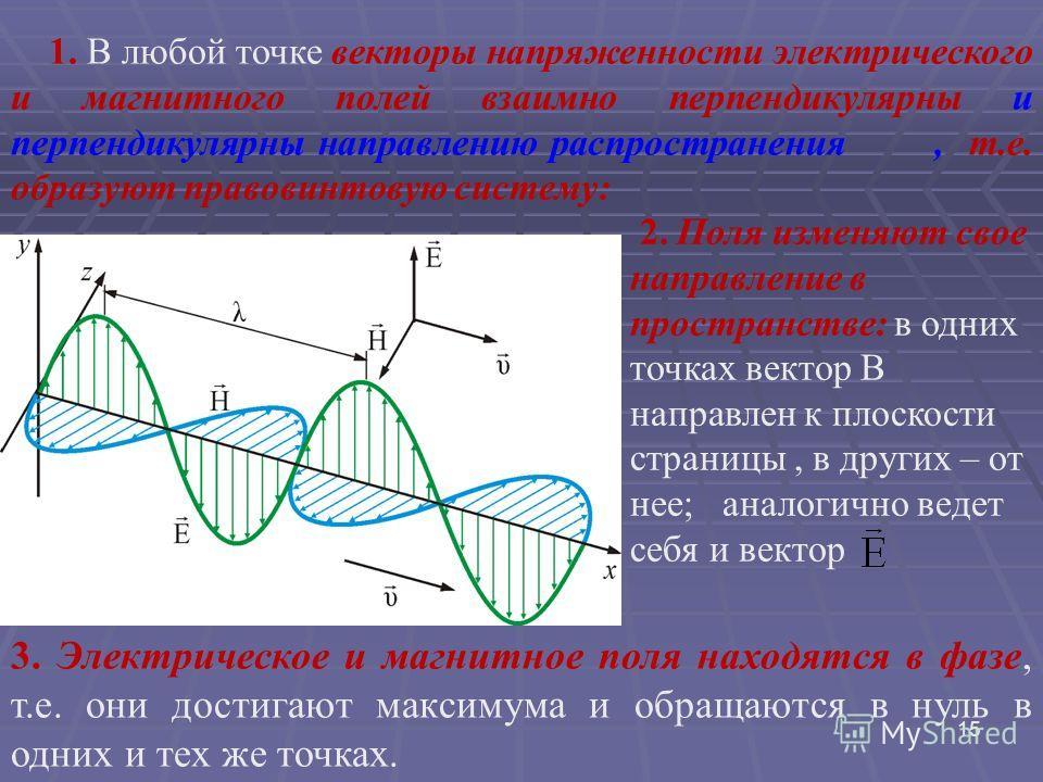 ЭМВ представляют собой поперечные волны и аналогичны другим типам волн. Однако в ЭМВ происходят колебания полей, а не вещества, как в случае волн на воде или в натянутом шнуре. Движущийся с ускорением электрический заряд испускает электромагнитные во