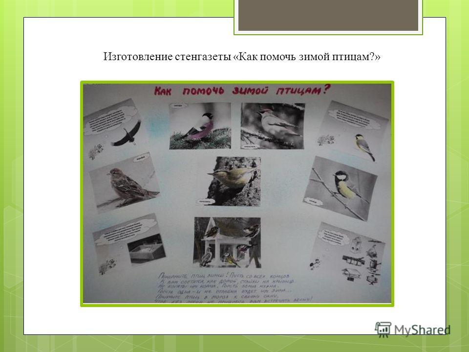 Изготовление стенгазеты «Как помочь зимой птицам?»