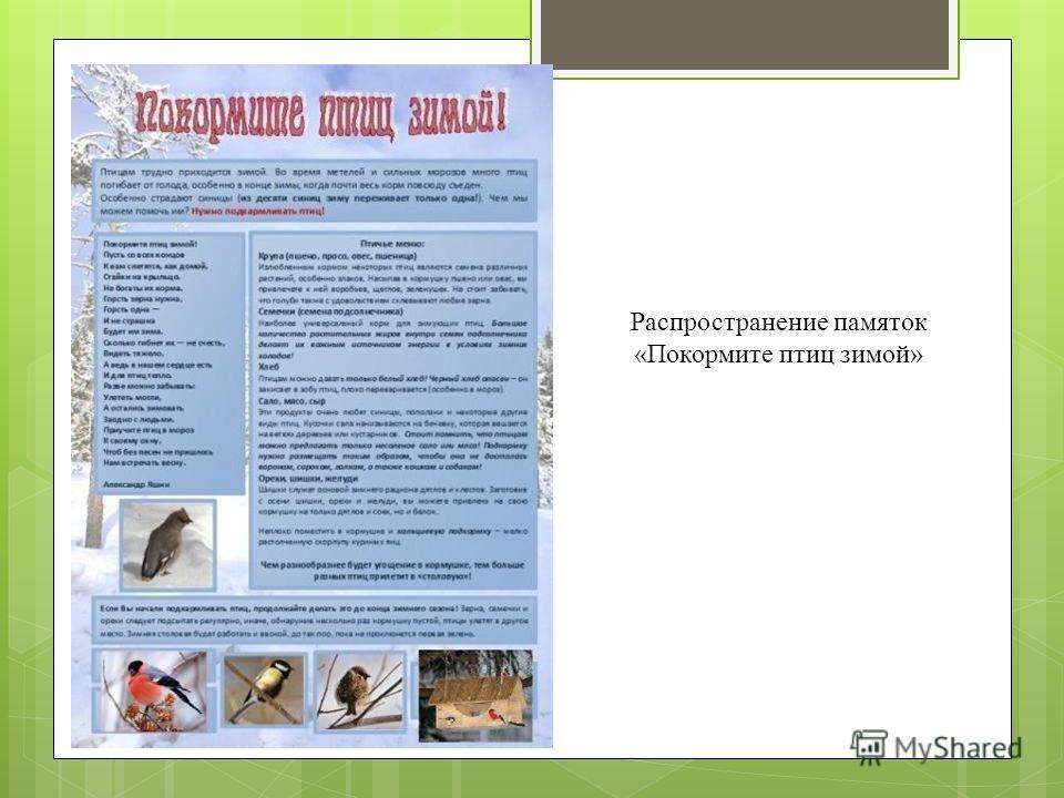 Распространение памяток «Покормите птиц зимой»