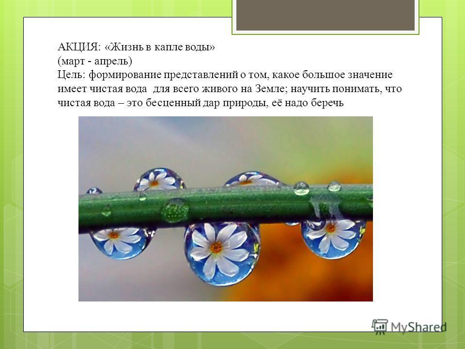 АКЦИЯ: «Жизнь в капле воды» (март - апрель) Цель: формирование представлений о том, какое большое значение имеет чистая вода для всего живого на Земле; научить понимать, что чистая вода – это бесценный дар природы, её надо беречь