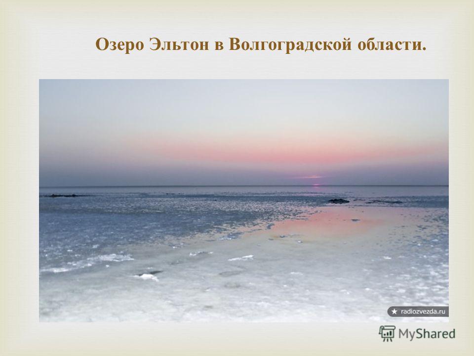 Озеро Эльтон в Волгоградской области.