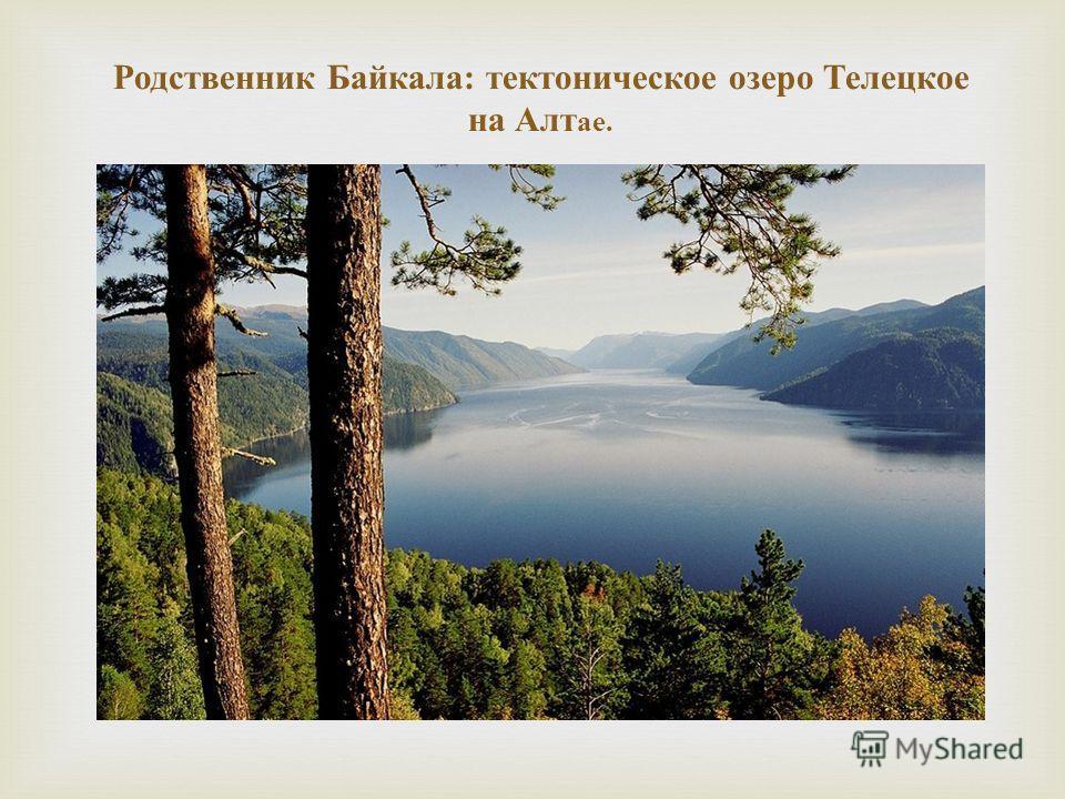 Родственник Байкала : тектоническое озеро Телецкое на Алт ае.