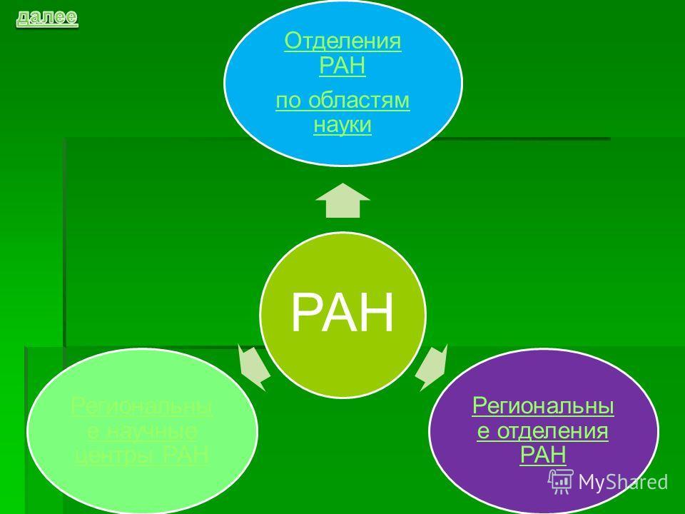 РАН Отделения РАН по областям науки Региональны е отделения РАН Региональны е научные центры РАН