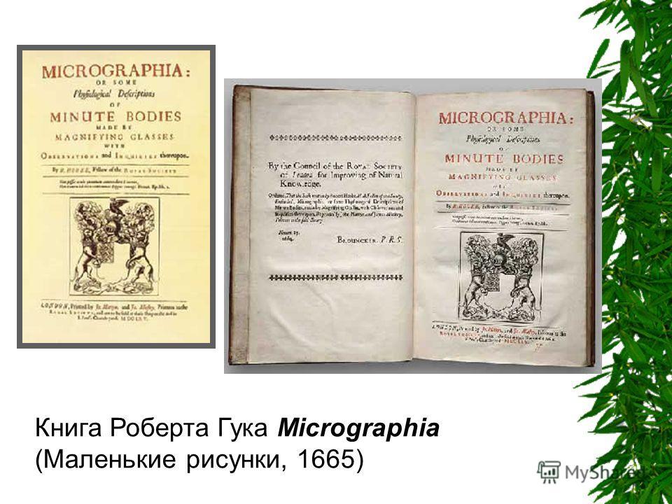 Книга Роберта Гука Micrographia (Маленькие рисунки, 1665)