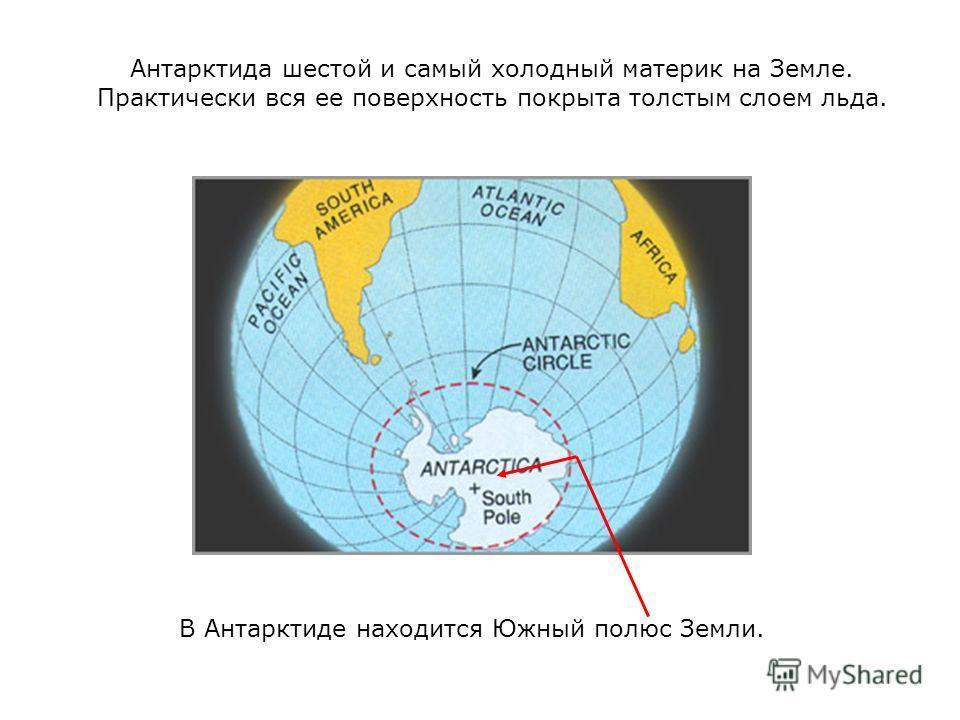 Антарктида шестой и самый холодный материк на Земле. Практически вся ее поверхность покрыта толстым слоем льда. В Антарктиде находится Южный полюс Земли.