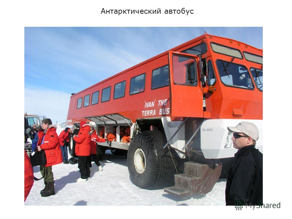 Антарктический автобус