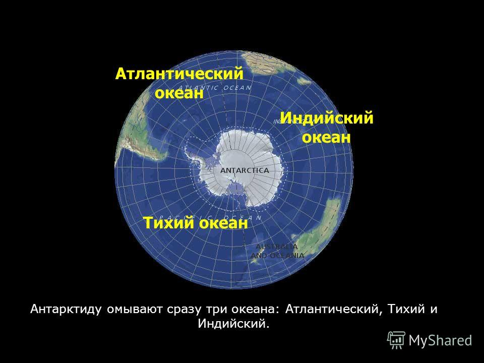 Антарктиду омывают сразу три океана: Атлантический, Тихий и Индийский. Атлантический океан Тихий океан Индийский океан