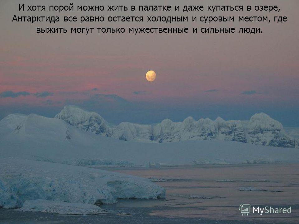 И хотя порой можно жить в палатке и даже купаться в озере, Антарктида все равно остается холодным и суровым местом, где выжить могут только мужественные и сильные люди.