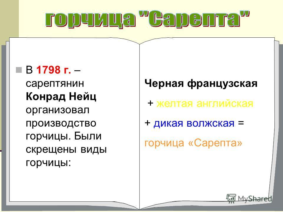 В 1798 г. – сарептянин Конрад Нейц организовал производство горчицы. Были скрещены виды горчицы: Черная французская + желтая английская + дикая волжская = горчица «Сарепта»