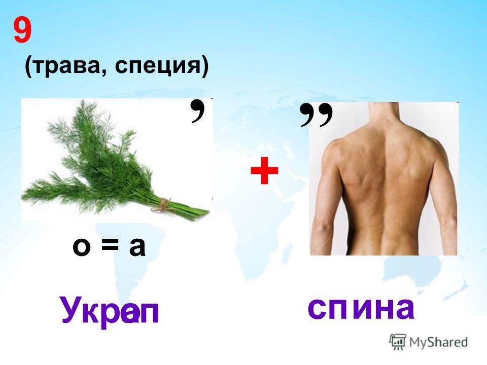9 + Укр о = а опа,, спина (трава, специя),