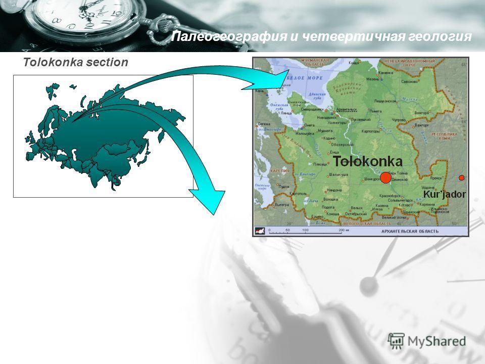 Tolokonka section Палеогеография и четвертичная геология