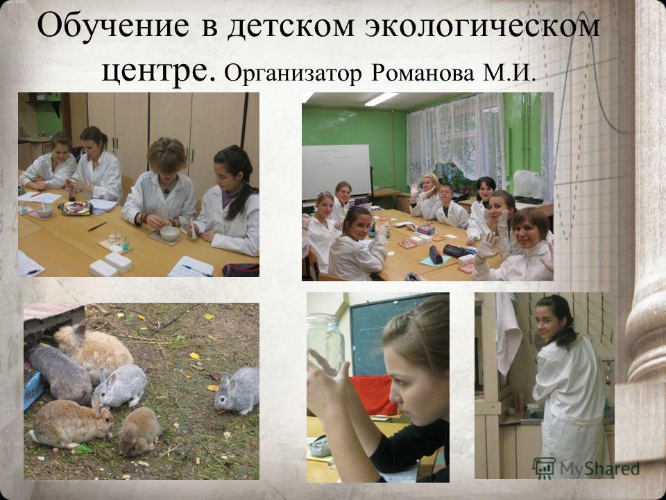 Обучение в детском экологическом центре. Организатор Романова М.И.