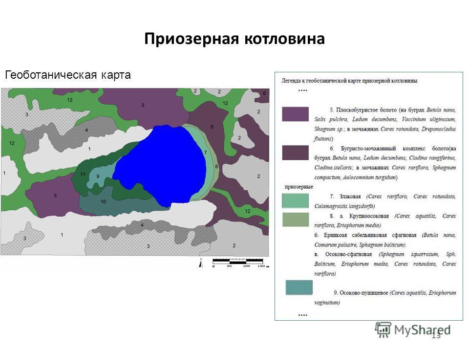 Приозерная котловина 13 Геоботаническая карта