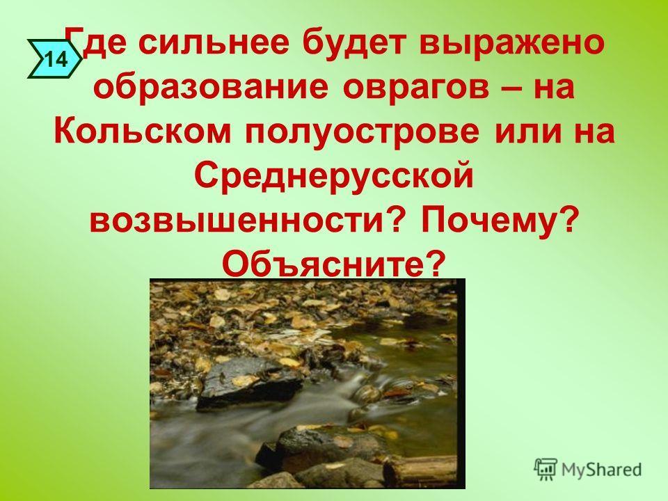 Где сильнее будет выражено образование оврагов – на Кольском полуострове или на Среднерусской возвышенности? Почему? Объясните? 14