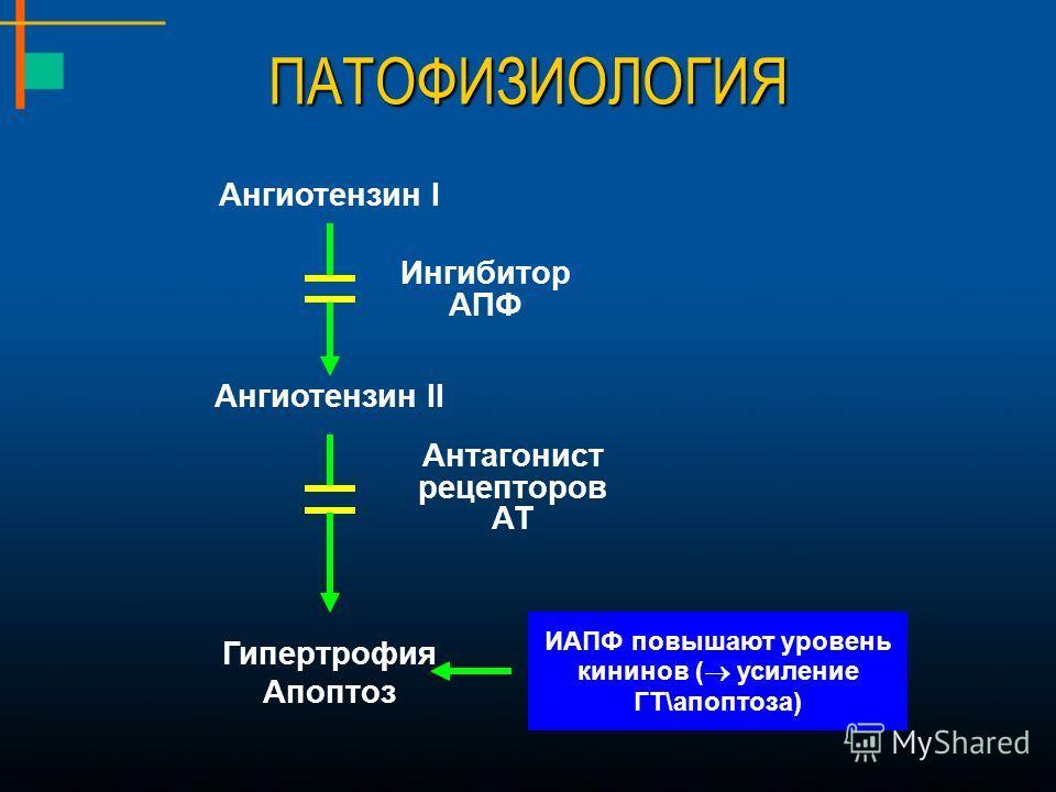ПАТОФИЗИОЛОГИЯ Ангиотензин I Ангиотензин II Гипертрофия Апоптоз Антагонист рецепторов АТ Ингибитор АПФ ИАПФ повышают уровень кининов ( усиление ГТ\апоптоза)